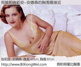 #我和明星比胸围# 身高 160cm,胸围 87cm,噢,卖糕的!郑威与美国影星吉莉安-安德森的胸围最接近!有图有真相: